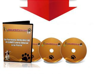 Video Curso de Educación Canina