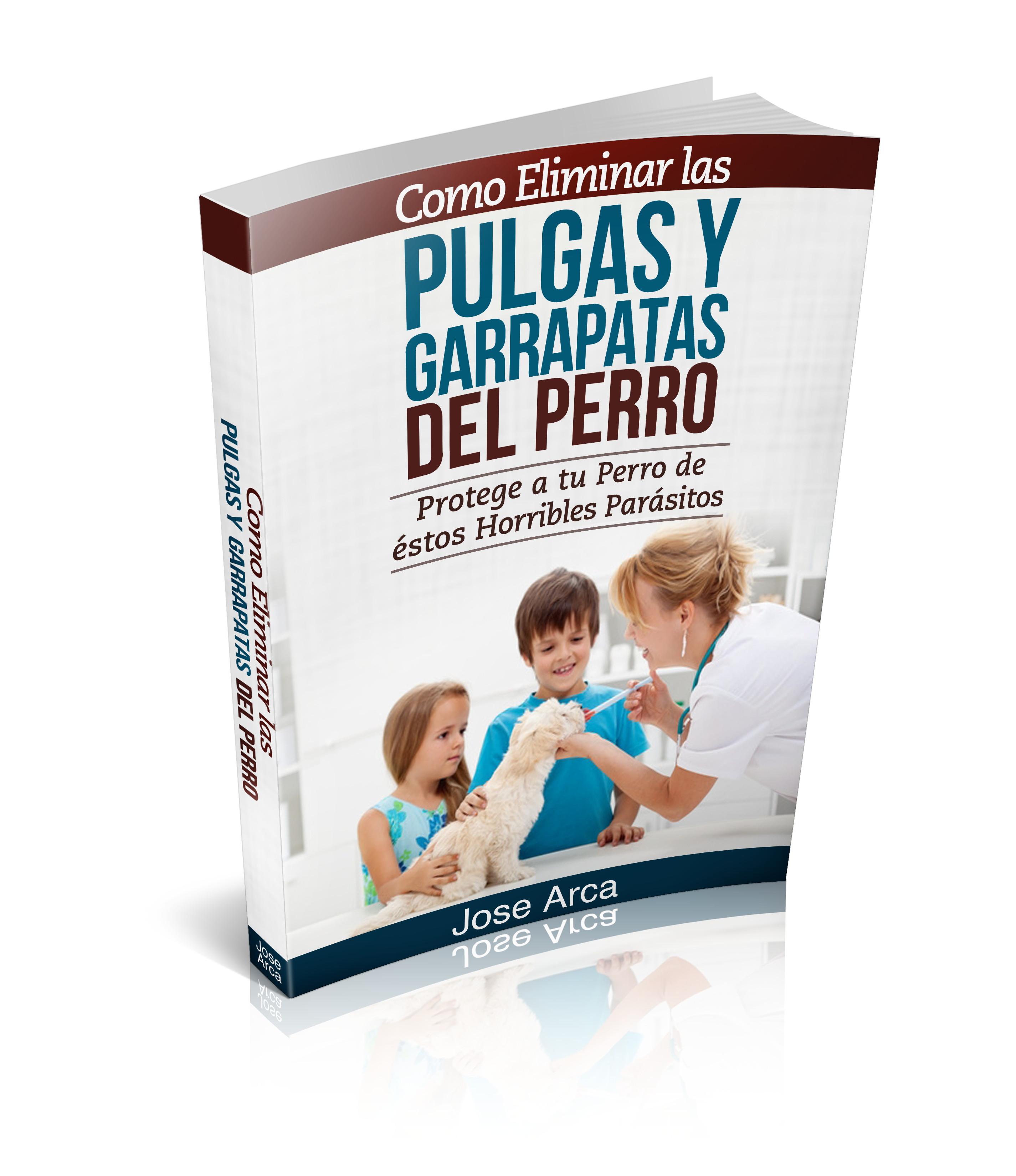 Aprende como eliminar las pulgas y las garrapatas en - Como erradicar las pulgas ...