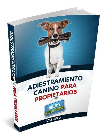 Adiestramiento Canino para propietariosS