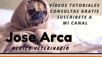 Jose Arca en Youtube